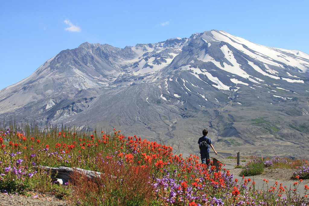 Mt St Helen Summer