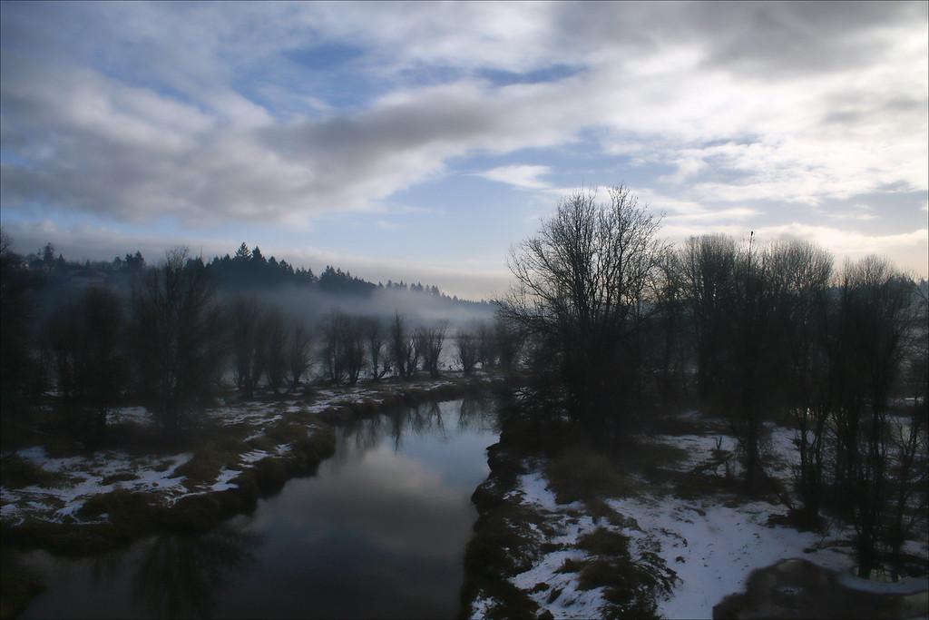 cold morning FelidaBridge