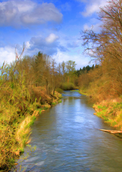 Salmon Creek Painted
