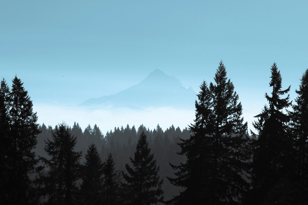 Mt  Hood Jpeg