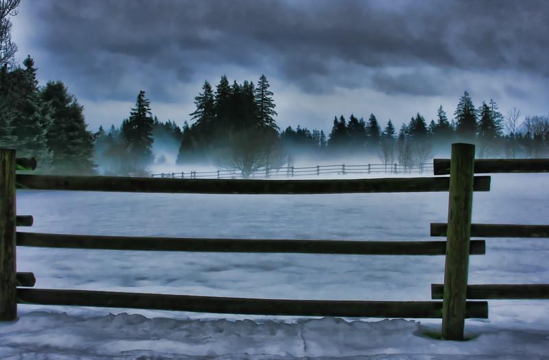 Fog and Snow Dec08