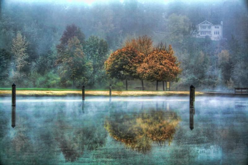 vivad fall reflected