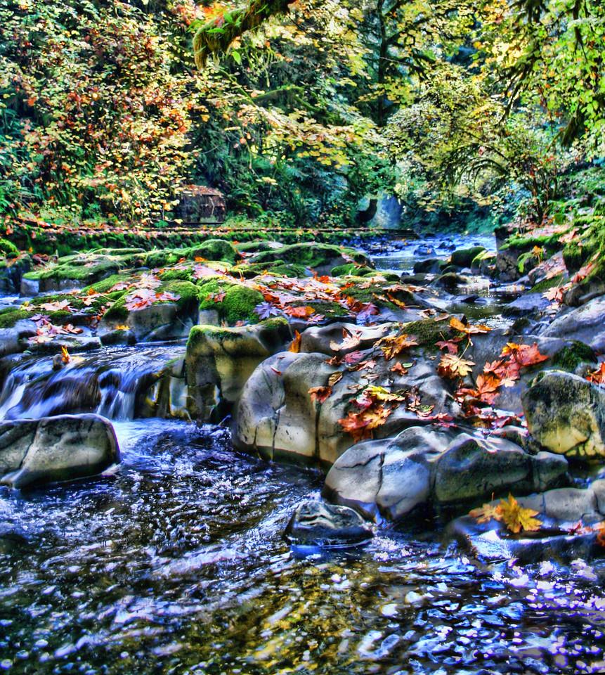 Cedar creek 2