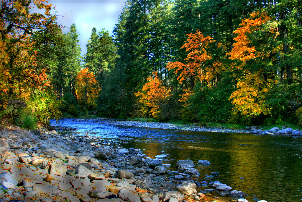 Lewis River -Lewisville Park