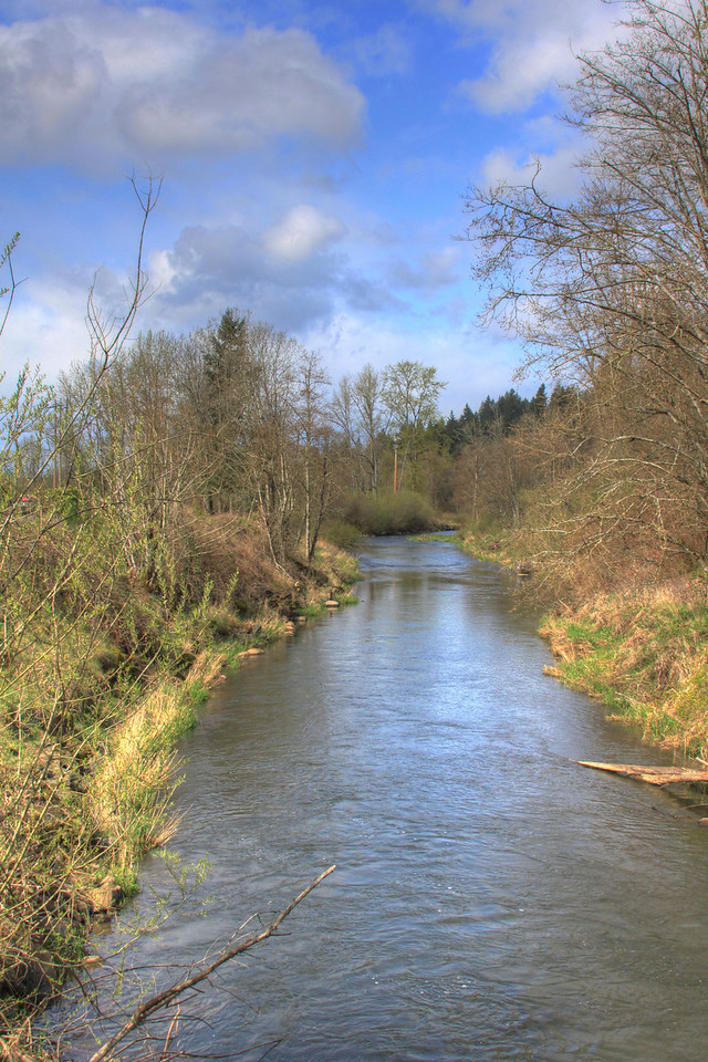 salmon Creek Spring 10