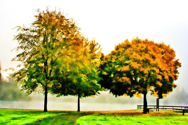 Fall trees Painted