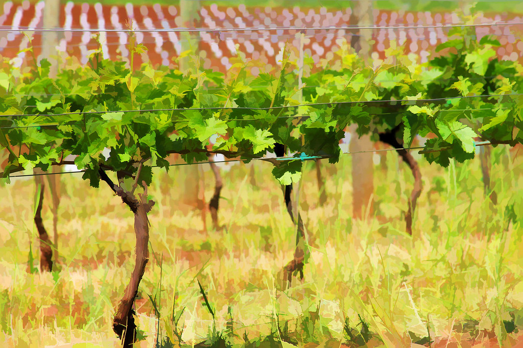 painted Vines close up