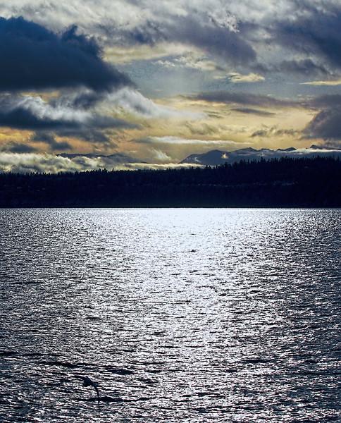 Ocean View Winter by Jodi Tripp in Port Townsend