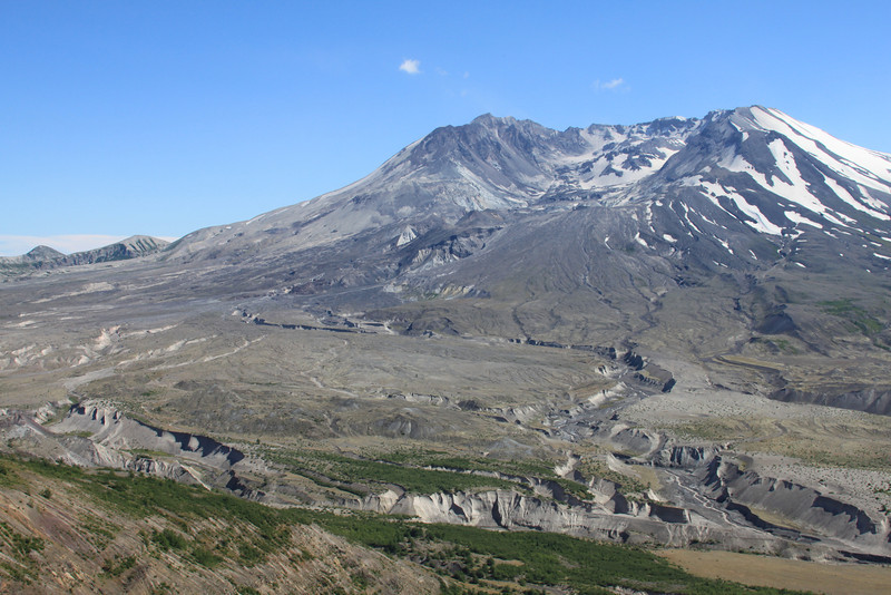 Mount St. Helens, Summer, willdflowers