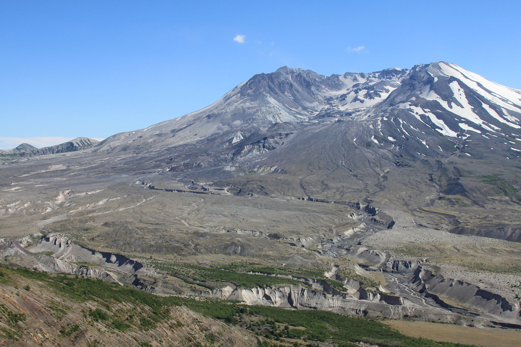 Mount St. Helens, Summer, willdflowers