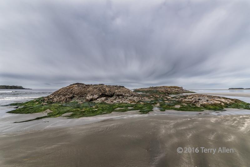 Low-tide,-with-raven,-Chesterman-Beach,-Tofino,-British-Columbia