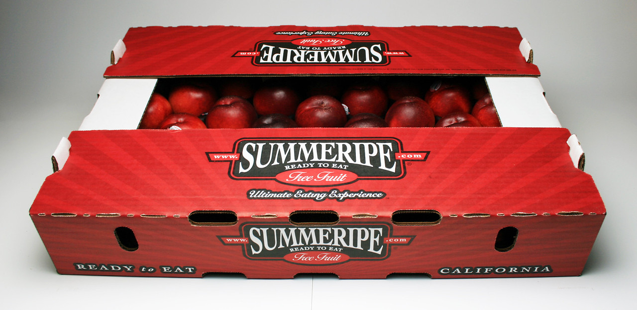1 Layer Euro Summeripe