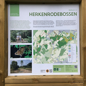 Herkenrodebossen_IMG_0664c_JD_KHB0318WI