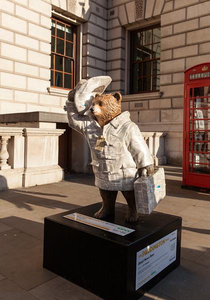 News Bear