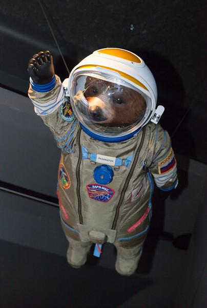 Gravity Bear