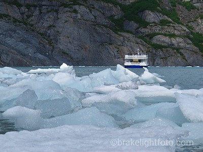 The Ptamigan Glacier Cruise
