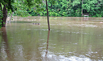 Shenandoah in flood.