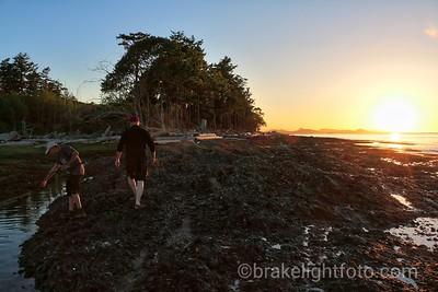 Exploring the Shoreline on Cabbage Island