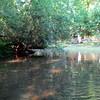 Cabin Creek