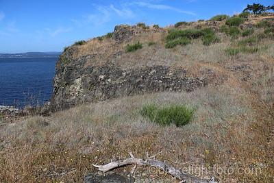 D'arcy Island