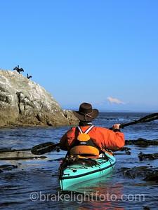 Kayaker off Trial Island