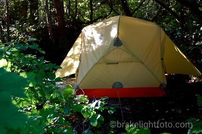 Campbell Island Campsite
