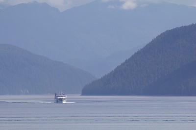 Northern Sea Wolfe exiting Burke Channel from Bella Coola
