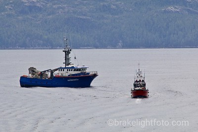 Coast Guard towing fish boat