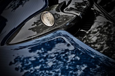 Pagani Huayra Roadster Badge