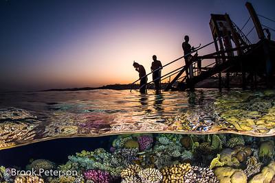 Snorklers Enter the Sea