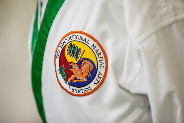 The Educational Martial Arts System Badge