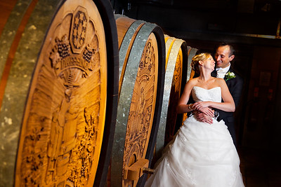 Formal portrait of a bride and groom at Denbies Vineyard in Dorking
