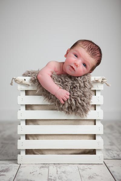 Newborn Baby Boy portrait in a rustic box