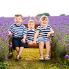 Child portraits at the Mayfield Lavender Field
