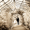 Bride and groom walking down the rose walk way in the grounds of Nonsuch Mansion