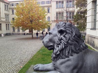 Vor dem Löwengebäude der Universität Halle
