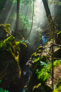 Avalanche Creek Sun Rays
