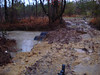Water level, down side of creek
