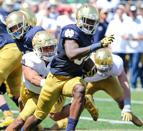 CHAD WEAVER   THE GOSHEN NEWS<br /> Notre Dame running back Dexter Williams tries to break free from linebacker James Onwualu during the second quarter of Saturday's Blue-Gold Game at Notre Dame Stadium.