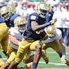 CHAD WEAVER | THE GOSHEN NEWS<br /> Notre Dame running back Dexter Williams tries to break free from linebacker James Onwualu during the second quarter of Saturday's Blue-Gold Game at Notre Dame Stadium.