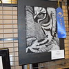 "This scratchboard called ""Fierce"" was made by Madison Goldstein, a ninth grader at Teutopolis High School. She earned First Place in her age group. Dawn Schabbing photo"