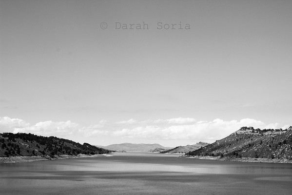 Real Life Photography of Darah Soria, Pics by Darah   Fort Collins, CO Photographer