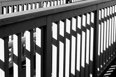 Railing_light_shadow_BW_KKD8955