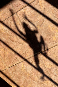 Shadow of Metal Frog Sculpture