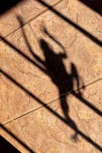 Shadow of Metal Frog Sculpture