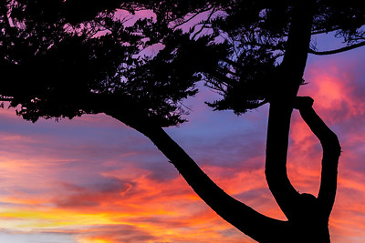 Sunset_Moonstone_Beach_Drive_DAK4525