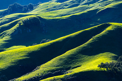 Hillscape_Light_Shadow_Green_DAK6863