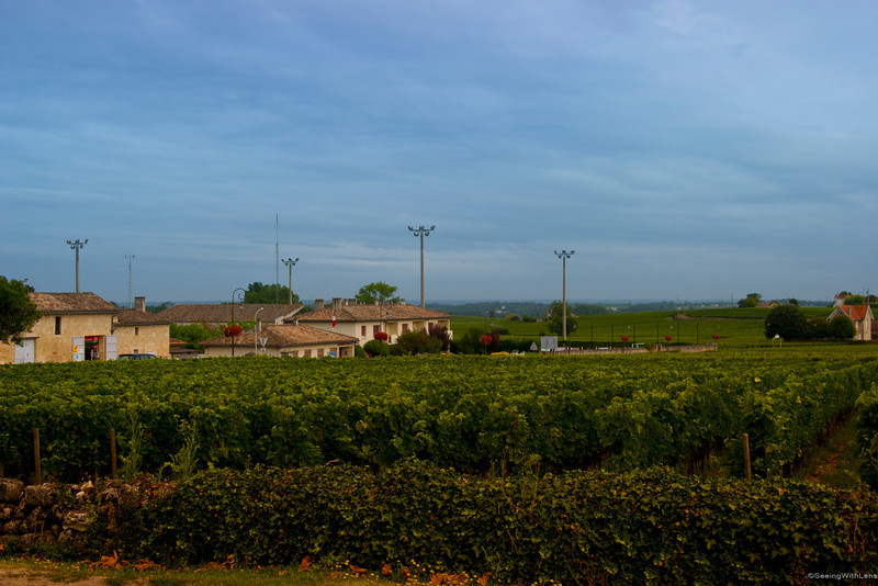 Vineyards of Saint-Emilion, France