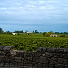 More Vineyards of Saint-Emilion, France
