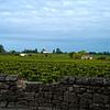 More Vineyards of Saint-Emilion, France